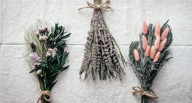 Sind Trockenblumen nur etwas für Menschen ohne grünen Daumen?