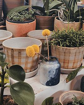 Pflanzengefäße