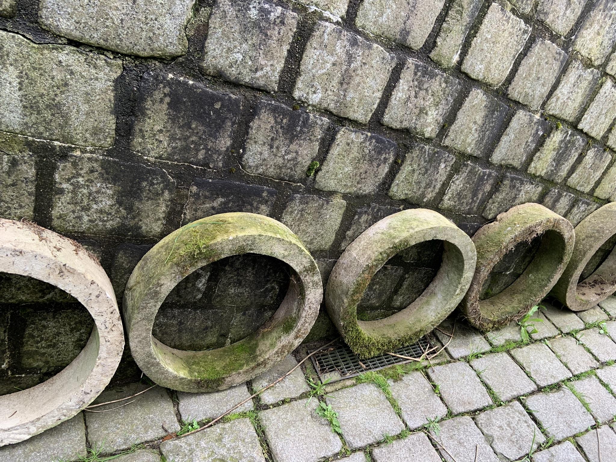 runde Pflanzenringe aus Beton