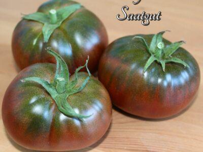 """Bio-Tomaten-Saatgut """"Tschernij Prinz"""" – aus eigenem Naturgarten"""