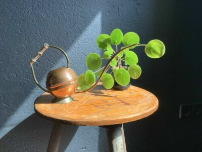 Alte Gießkanne Kupfer x Messing x Bambus Vintage Design